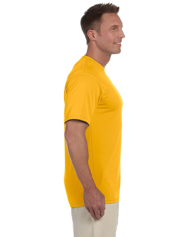 790 Augusta Sportswear GOLD