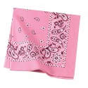 C842 Port Authority Bright Pink Paisley
