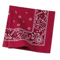 C842 Port Authority Engine Red Paisley